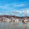 Yacht Haven Marina, 226475 - thumb